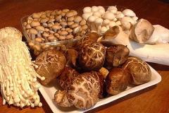 medicinal-mushrooms